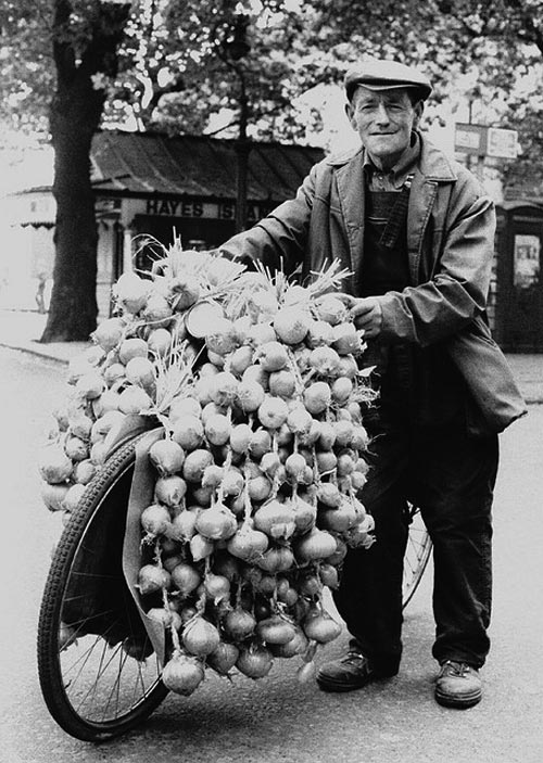 onion-johnny-french-onions-bike