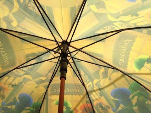 Umbrella struts
